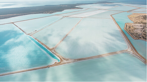 Shark Bay Salt
