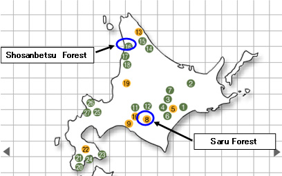 Mitsui's Company-owned Forests in the Hokkaido Area