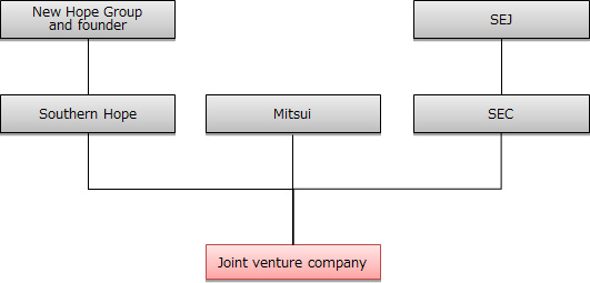 Equity structure of the joint venture company