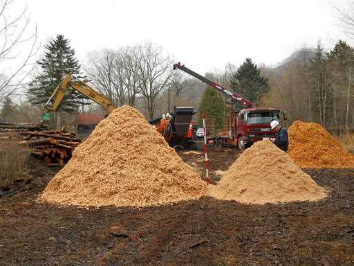 Woodchip processing in a forest area